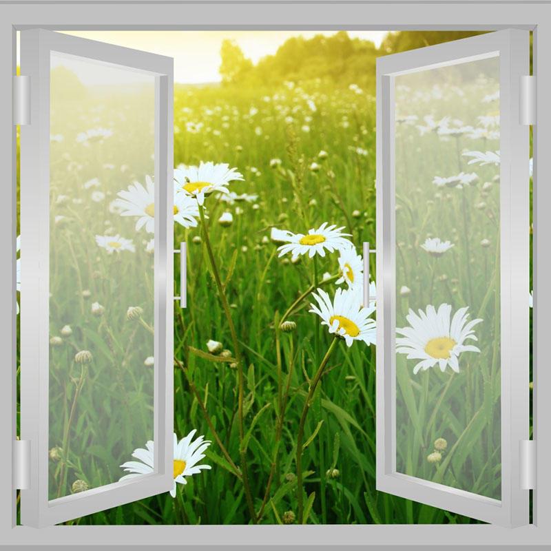 High Quality Customized Aluminum Swing Window